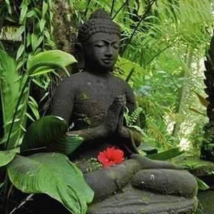 Méditation ou vacances ?